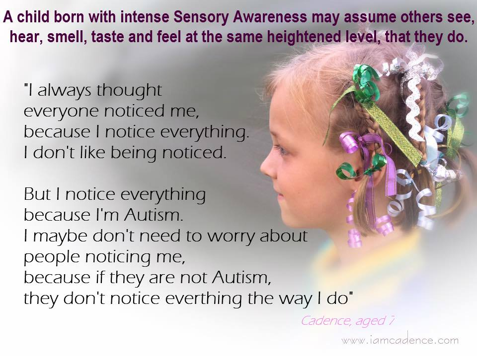 sensory noticing